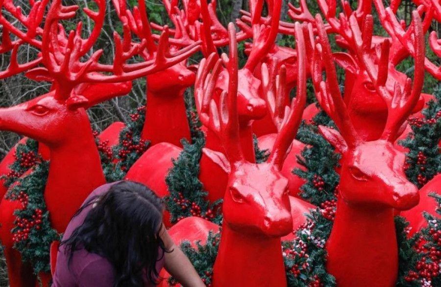 Montagem da decoração do 35º Natal Luz na reta final e vai começar a ganhar as ruas de Gramado